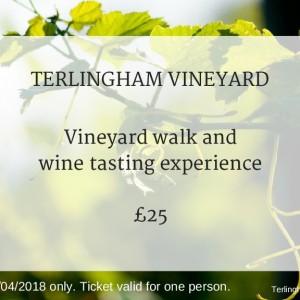 Terlingham Vineyard 280418 experience