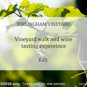 Terlingham Vineyard 310318 experience