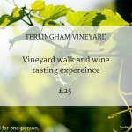 Terlingham Vineyard 'any date' experience