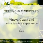 Terlingham Vineyard 020618 experience