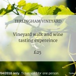 Terlingham Vineyard 290418 experience