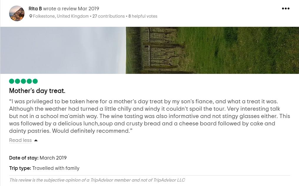 Vineyard Review 2